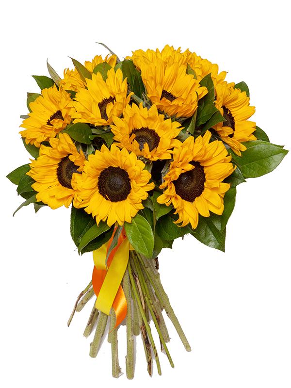 Цветы электрозаводской, букеты на заказ из подсолнухов